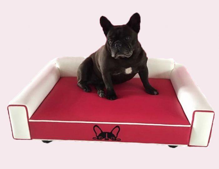 Divani ed imbotti su misura per cani cucce su misura in for Divano per cani