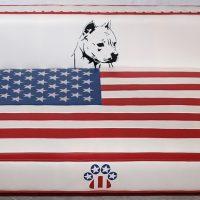 special-america2